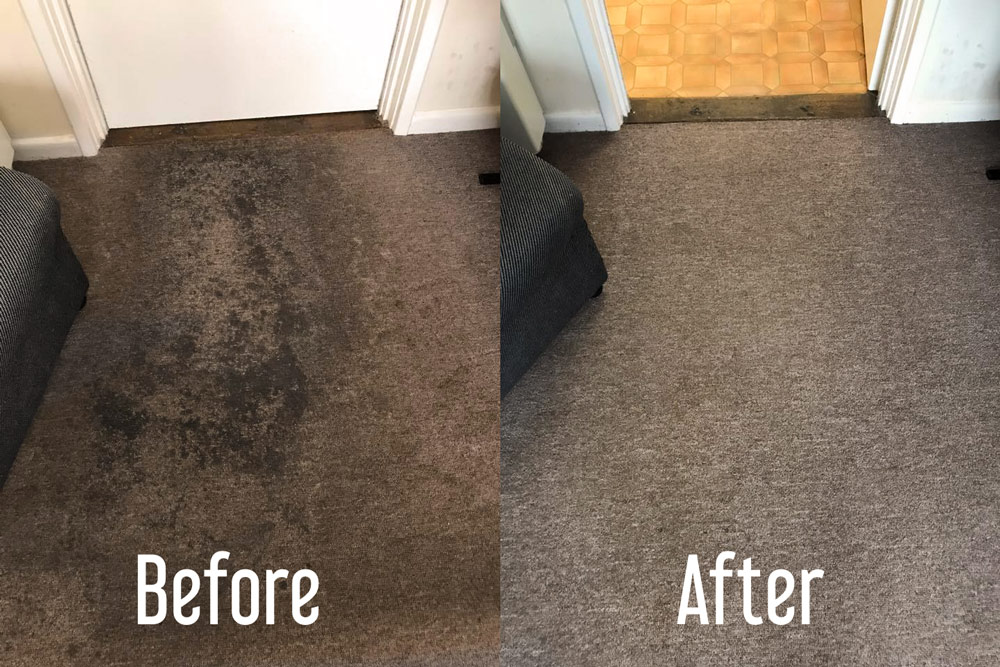 Cambridge Carpet Cleaning | 100